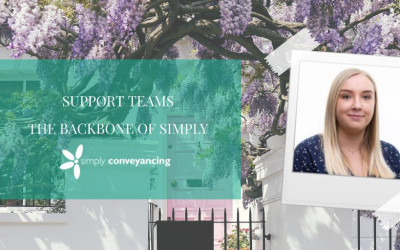Support Teams – The Backbone of Simply